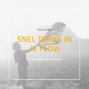 Snel terug in je flow (minitraject)